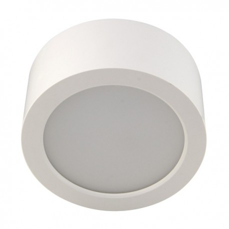LED Ceiling Surface Mounted Light DL52-12W